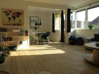 Bright and spacious Copenhagen apartment at Noerrebro - Copenhagen vacation rentals