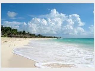 THE BEST LOCATION - Mamitas Beach - 5th avenue Playa del Carmen - Great Price - Playa del Carmen vacation rentals