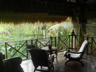 Villa Agung is named after the glorious Mt Agung - Karangasem vacation rentals