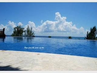 BEAUTIFUL PENTHOUSE WITH PRIVATE POOL- Steps from Mahekal beach caribbean sea - Playa del Carmen vacation rentals