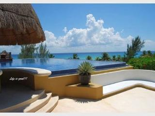 AMAZING PENTHOUSE- PRIVATE POOL!!Steps from Mahekal beach-Panoramic Roof View - Playa del Carmen vacation rentals