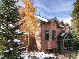 BRECKENRIDGE VILLAGE POINT 202 - Breckenridge vacation rentals