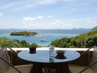 The Villa Oasis with a Boat on Great Camanoe Is. - Great Camanoe Island vacation rentals