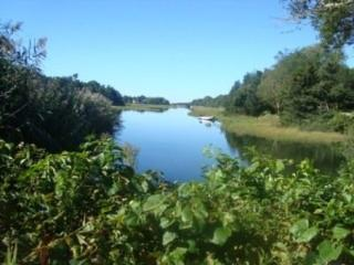 WFALMOUTH on BIKE PATH secluded KAYAKS INCL 121167 - West Falmouth vacation rentals