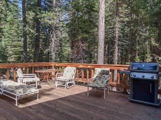 Homewood Retreat - Homewood vacation rentals