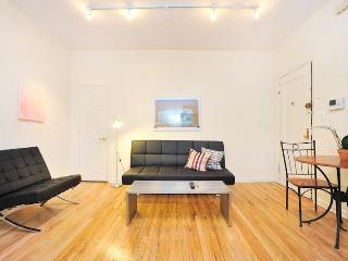 SKYFALL Sleek  Contemporary 2 Bedroom apartment - New York City vacation rentals