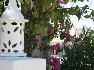 Urban Farm Near Albufeira, Algarve - Patroves vacation rentals