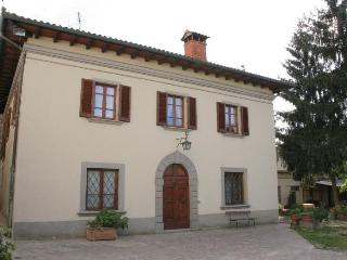 Rassina - 26448001 - Castel Focognano vacation rentals