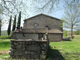Villa in Farnetella, Tuscany, Italy - Farnetella vacation rentals