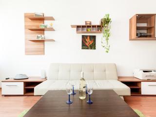 Beautiful 1BR Apt - Free Garage - Budapest vacation rentals
