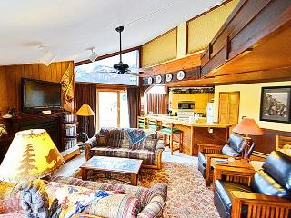 2bd Slps 6! Garage! Pets! - Crested Butte vacation rentals