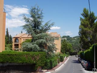 Apartment Paradisier In Mougins French Riviera*** - Mougins vacation rentals