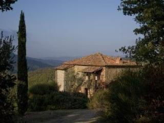 Civitella In Val Di Chiana - 64184001 - Civitella in Val di Chiana vacation rentals