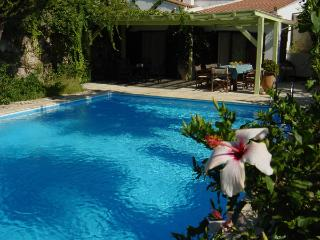 Spacious Villa with Internet Access and Cleaning Service - Episkopi vacation rentals