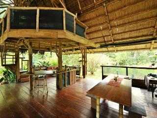 Lovely House with Deck and Porch - Puerto Jimenes vacation rentals