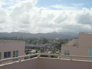 Beautiful Penthouse 3BD & 2BA in Caguas, PR - Caguas vacation rentals