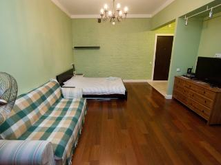 One room studio apartment center - Central Russia vacation rentals