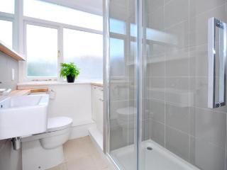 Central London Apartment With Patio In The Heart Of London - London vacation rentals