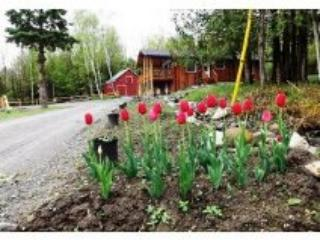 Jay Peak area Chalet lake views / private 16 acres - Newport Center vacation rentals