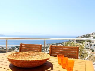Beautiful modern apartment with stunning sea views - Bodrum vacation rentals