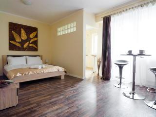 H7 Intimate & Modern Studio/Horizon Apartment Studium Green H7 - Cluj-Napoca vacation rentals