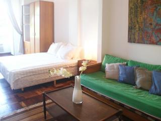 Ipanema apartment near beach / I-19 - Rio de Janeiro vacation rentals