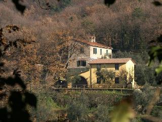 Monsummano Terme - 26086001 - Pistoia vacation rentals