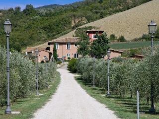 Alviano - 49798001 - Alviano vacation rentals