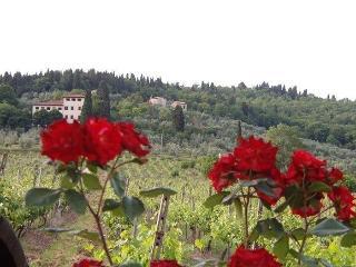 Rignano Sull'arno - 59360001 - Rignano sull'Arno vacation rentals
