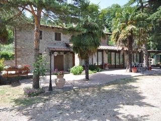Subbiano - 66156001 - Subbiano vacation rentals