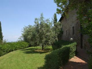 Montaione - 80248004 - Montaione vacation rentals