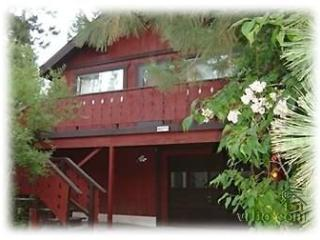 Kings Beach Chalet Retreat- Hot Tub - Kings Beach vacation rentals
