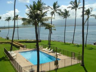 Oceanfront, 2 Bedroom, 2Bath, Great View, Amenities! Maalaea Bay! AC & elevator - Maalaea vacation rentals