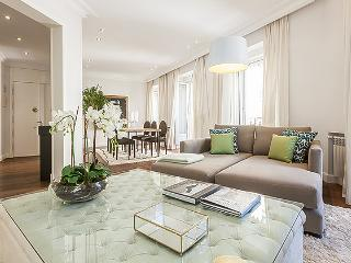 Ayala IV - Madrid vacation rentals
