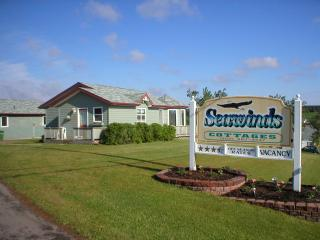 Seawinds Executive Cottage #4 - St. Catherines vacation rentals