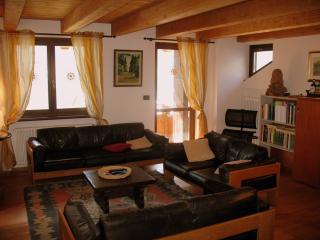 Courmayeur and Tour du Mont Blanc! - Pre-Saint-Didier vacation rentals
