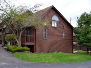 Bright 3 bedroom McHenry House with Fireplace - McHenry vacation rentals