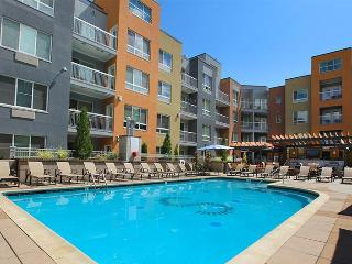 Stay Alfred Heated Pool and Patio Downtown ST2 - Denver vacation rentals