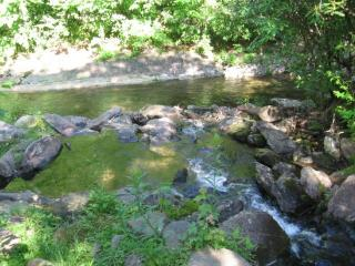 Cabin At Rock Creek,Surrounded by Nature & Solitud - Burnsville vacation rentals
