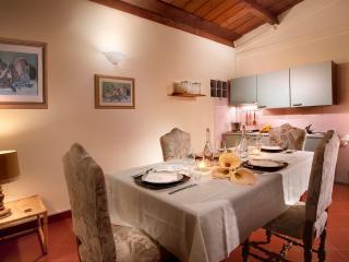 Vacation rental Chianti, 2bdr apt pool & free bike - San Giovanni Valdarno vacation rentals