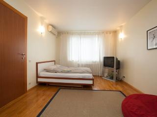 Apartment nearby Krokus-Expo(4) 165 - Moscow vacation rentals