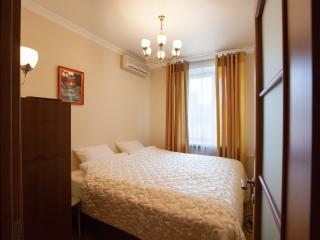 Two-room apartment on Kievskaya - Central Russia vacation rentals