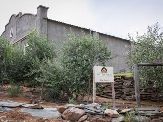 Matjiesvlei Cottages: Die Skuur - Calitzdorp vacation rentals