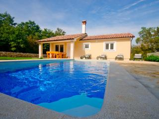 Romantic and peaceful Villa with pool- Villa Darko - Svetvincenat vacation rentals