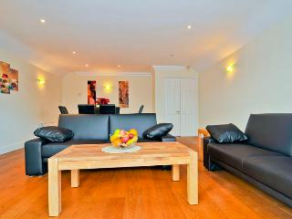 large and functional apartment in Putney SW London - Epsom vacation rentals