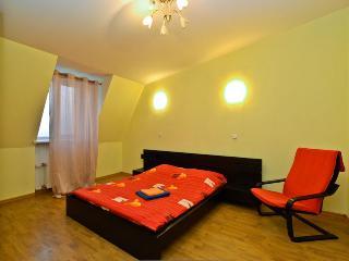 Pushkin 10 mansarda (La Casa di Bury) - Russia vacation rentals