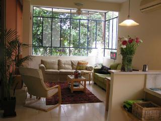 Lovely 3 bedroom Condo in Tel Aviv with Internet Access - Tel Aviv vacation rentals