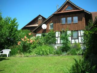 Tranquil, cosy with Alpine views - Obfelden vacation rentals