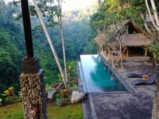 Stunning River View at Alami Villa with Staff - Ubud vacation rentals