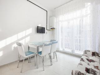 Cozy Double Room Flat in Taksim - Kozakli vacation rentals